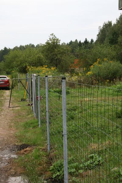 Pigiausia tvora
